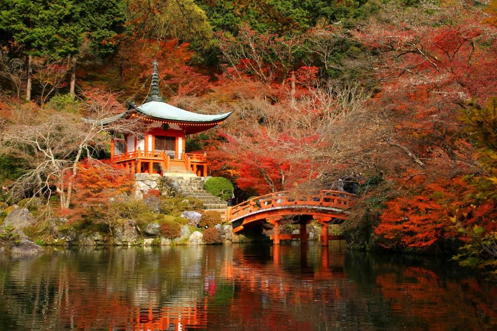 باغ کیوتو،ژاپن