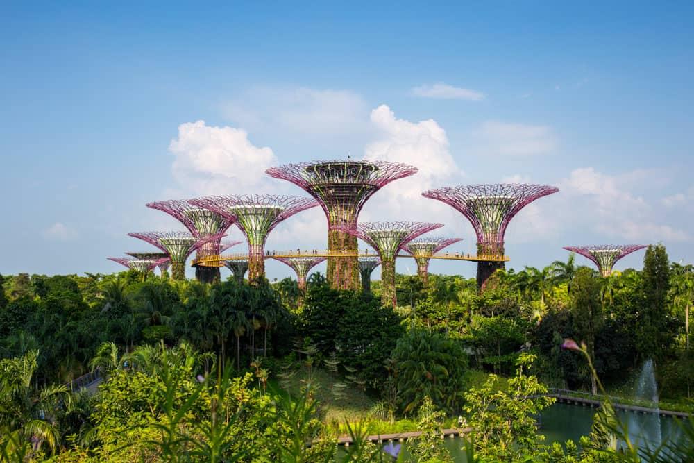 باغ های خلیج،سنگاپور