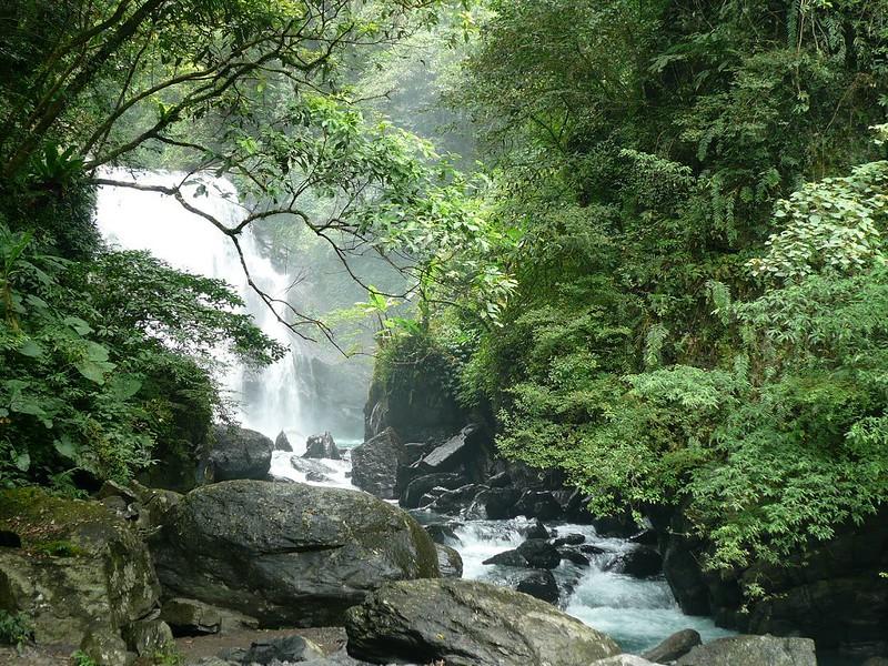 پارک جنگلی ملی نیندونگ،زیندین،تایپه جدید